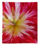 Striped Flaming Tulips. Hot Pink Rio Carnival Fleece Blanket
