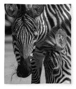 Stripes - Zebra Fleece Blanket
