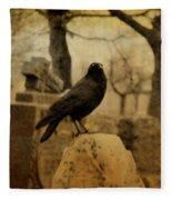 Study Of The Surly Raven Fleece Blanket