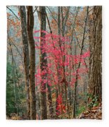 Sumac In Morning Light At Cumberland Falls State Park Fleece Blanket