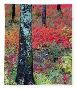 Sumac Slope And Lichen Covered Tree Fleece Blanket