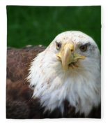 Summer Bald Eagle  Fleece Blanket