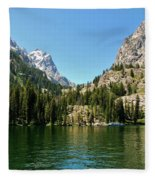 Summer Day At Jenny Lake Fleece Blanket