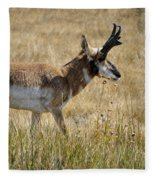 Summer Pronghorn Rain Fleece Blanket