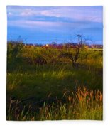 Summer Shot Of Old Shack By Creek, St Fleece Blanket