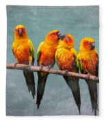 Sun Conures Fleece Blanket