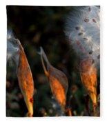 Sun Kisses Milkweeds Fleece Blanket