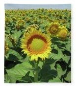Sunflower And Honeybees July Two K O Nine  II Fleece Blanket