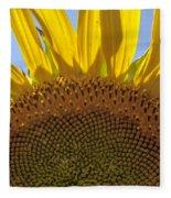Sunflower Arch Fleece Blanket
