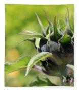 Sunflower Bud Fleece Blanket