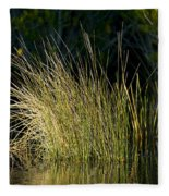 Sunlight On Grass Original Fleece Blanket
