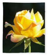 Sunlight On Yellow Rose Fleece Blanket