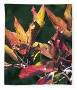 Sunlit Leaves Fleece Blanket