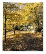 Sunny Day In The Autumn Park Fleece Blanket