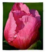 Sunrise Pink Fleece Blanket
