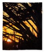 Sunset In The Trees Fleece Blanket