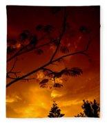 Sunset Over Florida Fleece Blanket
