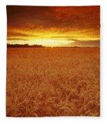 Sunset Over Wheat Field Fleece Blanket