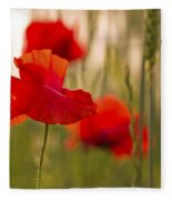 Sunset Poppies. Fleece Blanket