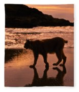 Sunset Stroll Fleece Blanket
