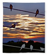 Sunsets And Birds Fleece Blanket