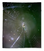 Sunshine On Swamp Spider Fleece Blanket