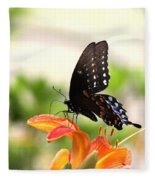Swallowtail - Lite And Lively Fleece Blanket