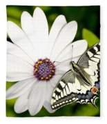 Swallowtail Butterfly Fleece Blanket