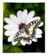 Swallowtail Butterfly Resting Fleece Blanket