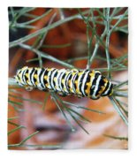 Swallowtail Caterpillar Fleece Blanket