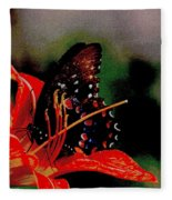Swallowtail On Orange Fleece Blanket