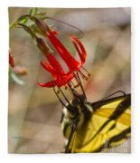 Swallowtail On Scarlet Gilia Fleece Blanket