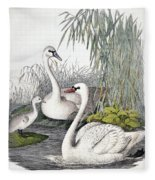 Swans, C1850 Fleece Blanket