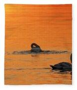 Swans In Early Light  Fleece Blanket