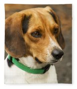Sweet Little Beagle Dog Fleece Blanket
