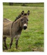 Sweet Little Donkey Fleece Blanket