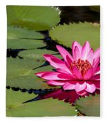 Sweet Pink Water Lily In The River Fleece Blanket