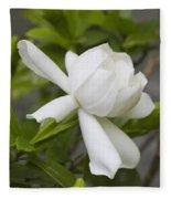 Sweet Sweet Gardenia Fleece Blanket