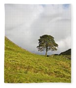 Sycamore Gap II Fleece Blanket
