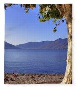 sycamore tree at the Lake Maggiore Fleece Blanket