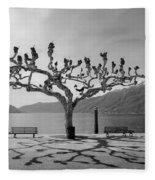 sycamore trees in Ascona - Ticino Fleece Blanket