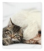 Tabby Kitten And Bichon Fris� Fleece Blanket