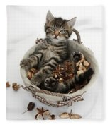 Tabby Kitten In Potpourri Basket Fleece Blanket