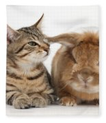 Tabby Kitten With Rabbit Fleece Blanket