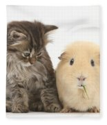 Tabby Kitten With Yellow Guinea Pig Fleece Blanket