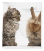 Tabby Kitten With Young Rabbit, Grooming Fleece Blanket
