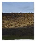 Table Rock Panorama Fleece Blanket