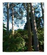 Tall Trees Fleece Blanket