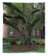 Tampa Tree  Fleece Blanket