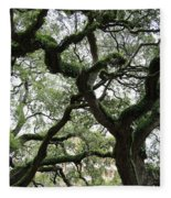 Tampa Trees Fleece Blanket